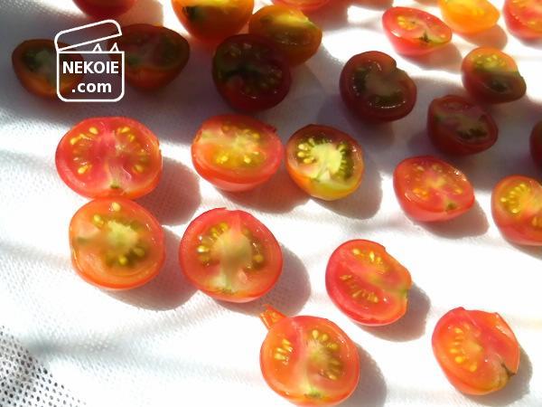 収穫したミニトマトを、ドライにして長期保存。