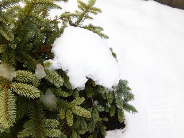 無印良品*11月の雪活と、縁起のいい感謝祭。