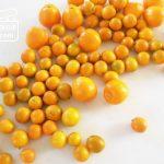 お正月にも役立つ、柚子と金柑の使い方7つ。