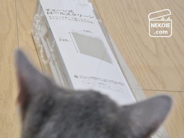 カインズ/DIY*猫リビングに設置4年目、激安ロールスクリーン。