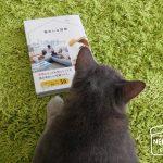 掲載誌発売日*4コマ、「毎日ネコに伝えたいこと」。