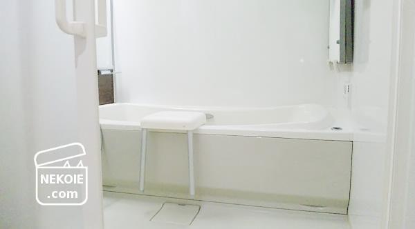 大掃除2015*バスルーム最終日、上から下へ。