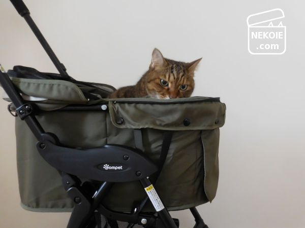 組み合わせて使える、猫のキャリーバッグ。