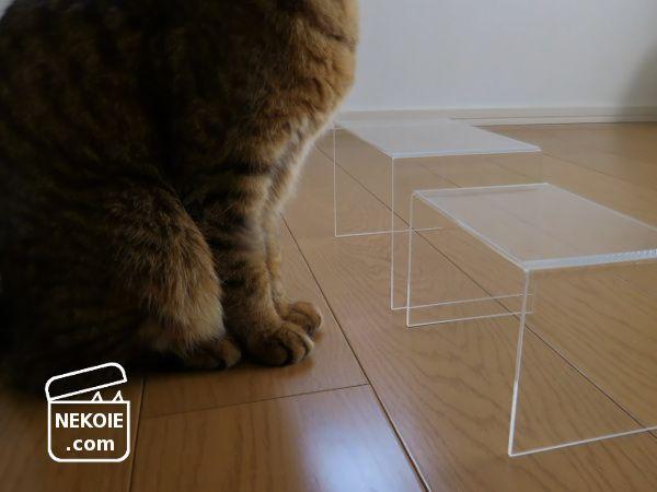 無印風アクリル仕切棚で、猫のごはん台。