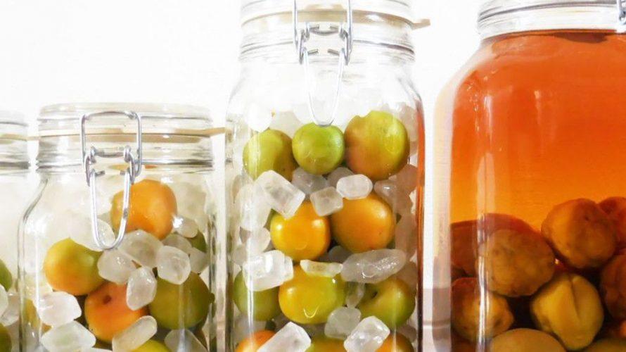 梅しごと、小瓶でたくさん仕込む理由。