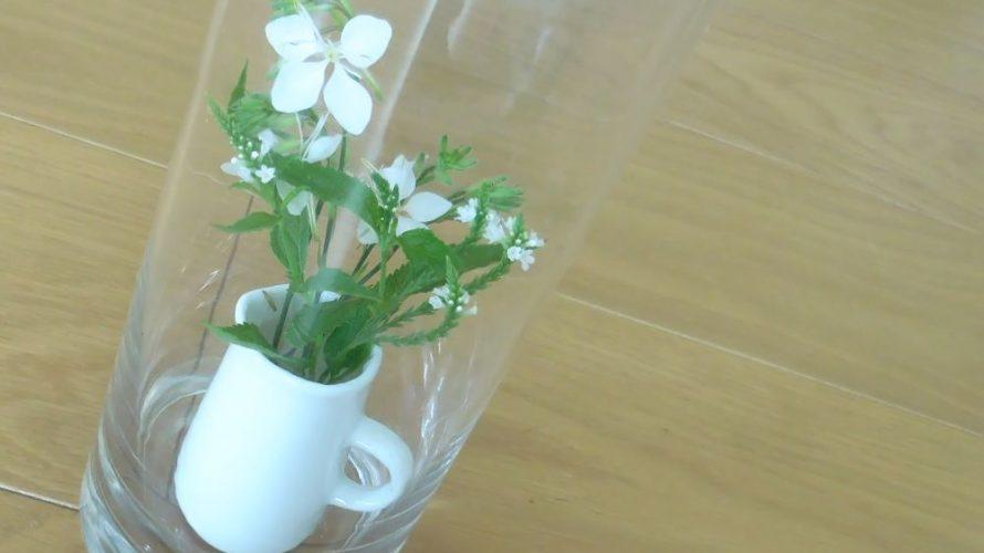 花を閉じこめる、楽しみ。