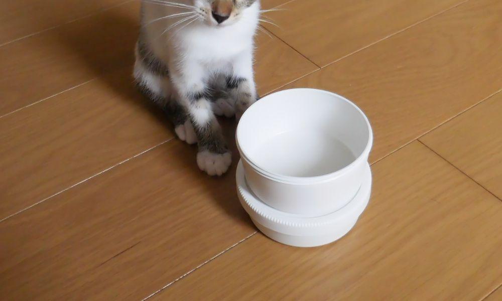 無印良品*猫にも便利な、丸型弁当箱。