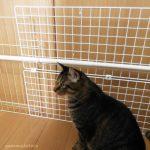 DIY*猫との暮らしに、手づくりフェンス。