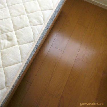 猫と眠る、ベッドの下に置いたもの。