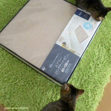 猫の介抱用寝具に、エアリーマットレス。