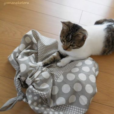 少ないバッグに、風呂敷を足す。