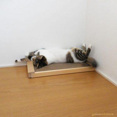 小さなベランダで、より多くの寝具を干す工夫。