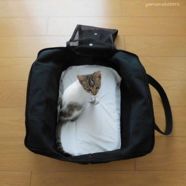 汚れを目立たせたい、猫用品。