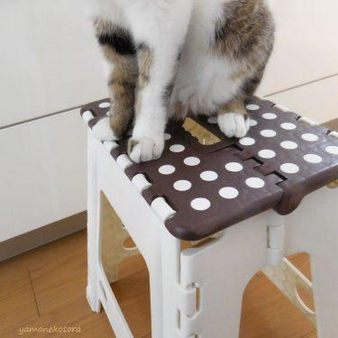 キッチンで使う、ひとやすみの椅子。