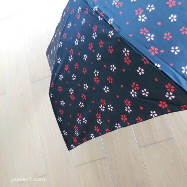 10年前に500円で買った、折りたたみ傘。